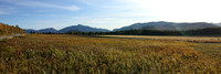 Western Adirondacks from Loj Rd., Lake Placid, NY